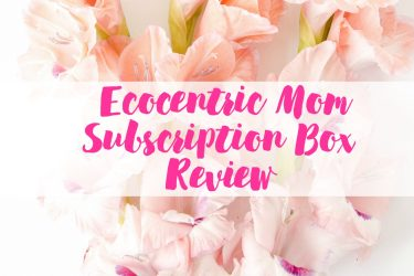 Ecocentric Mom Subscription Box Review