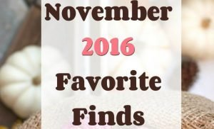 november favorite finds