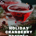 Holiday Cranberry Cocktail Recipe