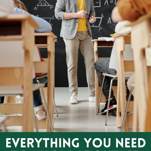 Everything you need to know about IEP